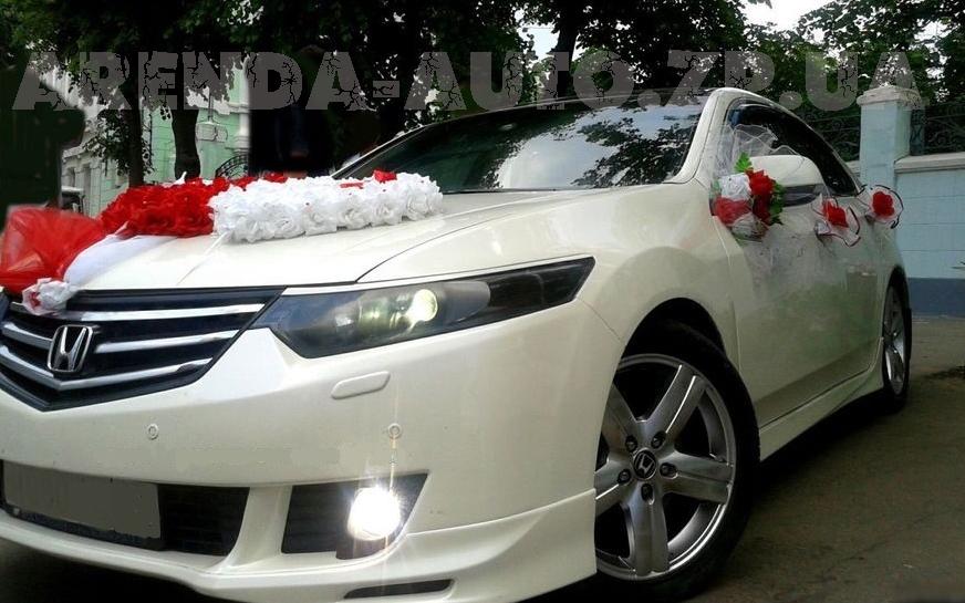 Аренда Honda Accord на свадьбу Запорожье